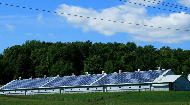 The Benefits of Running a Solar-Powered Business | Cedar Creek Energy
