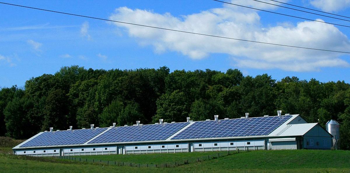 The Benefits of Running a Minnesota Solar-Powered Business